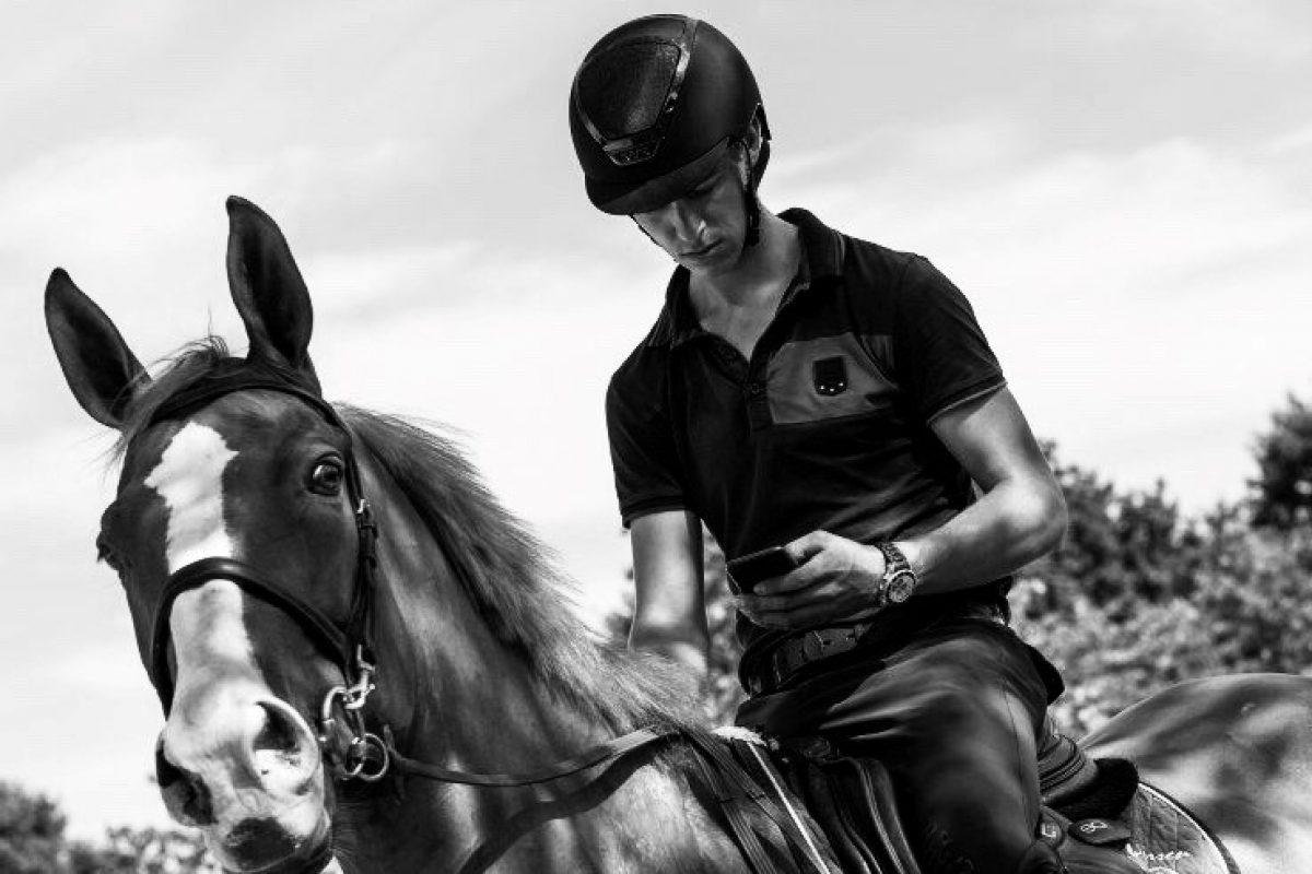 foto paard telefoon